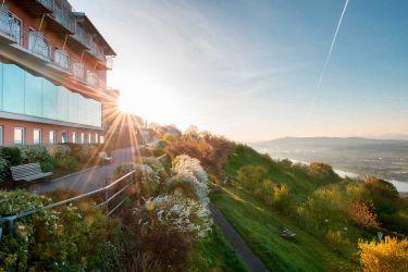 Hotel-Restaurant Schachner ****