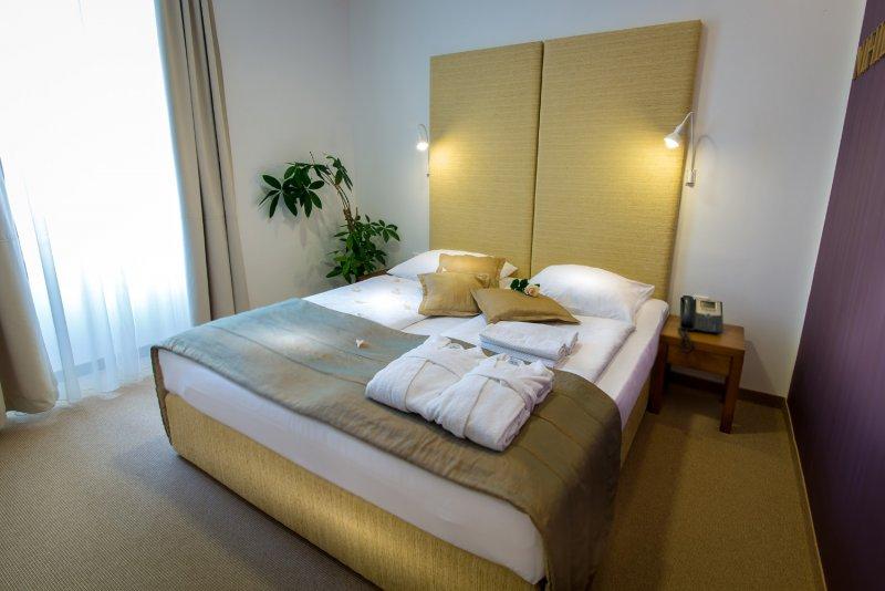 Hotel Zdraviliški Dvor ****