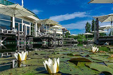 Sommerfrische im AVITA Resort