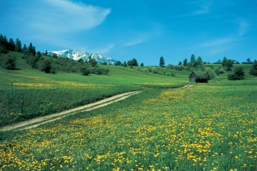 Region Semmering-Rax-Schneeberg