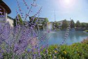 Frühlingserwachen im SPA Resort Therme Geinberg